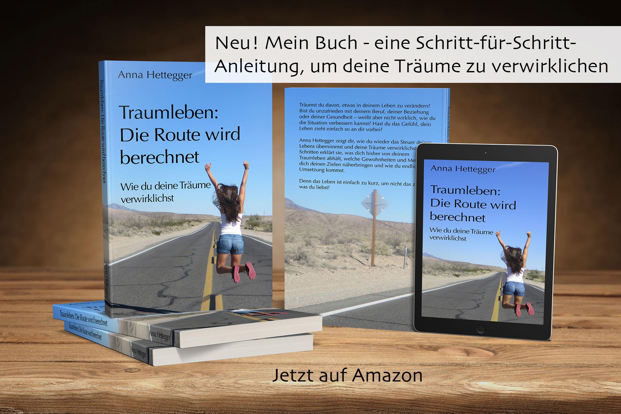 Traumleben: Die Route wird berechnet Buch